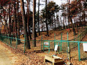 佐久市 平尾山公園ドッグラン 大型犬用